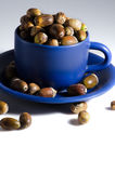 Acorns and MugAcorns and mug Royalty Free Stock Photography