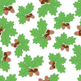 Acorns With Oak Leaves in Summer Seamless Texture. Light brown acorns with dark brown hats on a branch with bright green oak leaves on a white background Royalty Free Stock Photography