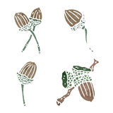 Acorns retro ilustration Stock Images