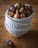 Acorns in a Stack of Bowls Royalty Free Stock Images