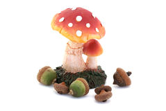 Acorns and a toadstool. Royalty Free Stock Image