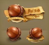 Acorns vector icons Stock Images