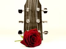 Acoustic Stock Image