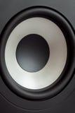 Acoustic bass loudspeaker, stereo speaker close up. Royalty Free Stock Image