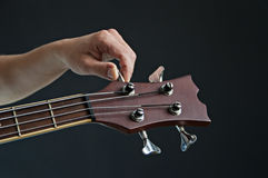Acoustic bass Royalty Free Stock Images