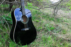 Acoustic black Guitar in the woods Royalty Free Stock Photo