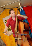 Acoustic Double Bass Player 2 Royalty Free Stock Image