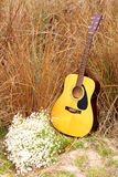 Acoustic guitar. And flower in dried grass field stock photos