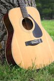 Acoustic Guitar. An acoustic guitar resting up against a tree Stock Photos