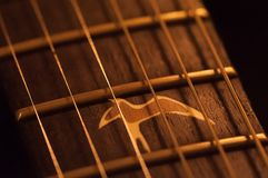 Acoustic guitar close-up strings, fingerboard. Western acoustic guitar close-up strings, fingerboard stock image