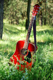 Acoustic guitar in the grass. Acoustic guitar in the green grass stock images