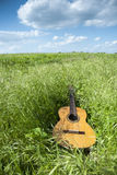 Acoustic guitar in the grass field Royalty Free Stock Photography