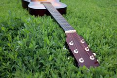 Acoustic guitar in the green grass Royalty Free Stock Image