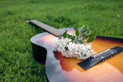 Acoustic guitar in the green grass Stock Image