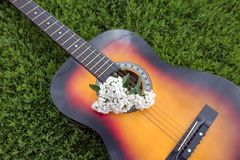 Acoustic guitar in the green grass Stock Photo