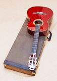 Acoustic guitar. Acoustic guitar and its case Stock Image