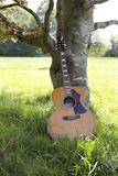 Acoustic guitar leaning against a tree Royalty Free Stock Photography