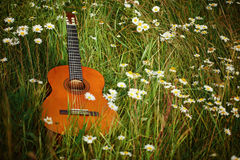 Acoustic guitar lying on green grass with chamomile Royalty Free Stock Photos