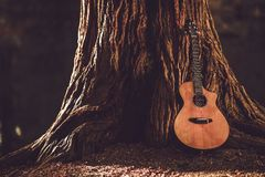 Acoustic Guitar and Tree. Acoustic Guitar and the Old Tree. Music Theme with Acoustic Guitar Stock Images
