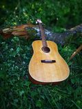 Acoustic Guitar. In the woods royalty free stock photo