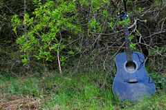 Acoustic Guitar in the woods Stock Images