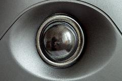 Acoustic tweeter loudspeaker, stereo speaker close up. Active studio monitors, audio a column a view behind on governing bodies stock photos