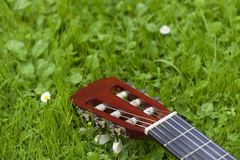 Guitar on the grass. Royalty Free Stock Photo