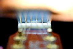 Acoustics guitar resting in garden royalty free stock photography