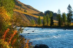 Acqua blu in fiume. Fotografia Stock Libera da Diritti