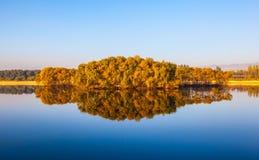 Acqua calma in autunno tardo Fotografia Stock Libera da Diritti