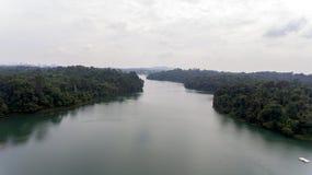 Acqua calma su un lago circondato con pianta Immagine Stock Libera da Diritti