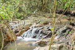 Acqua che cade sulla roccia e sulla pietra del passaggio del fiume in foresta fotografia stock libera da diritti