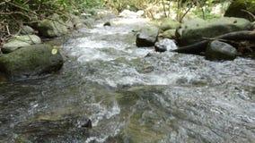Acqua che entra giù sulla cataratta nel fiume video d archivio