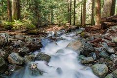 Acqua che entra nel fiume a valle Immagine Stock
