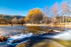 Acqua che entra sopra una piccola diga nell'autunno fotografia stock libera da diritti