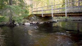 Acqua che entra in un fiume della foresta con un piccolo ponte stock footage