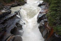 Acqua che precipita attraverso un canyon Fotografia Stock