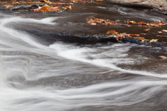 Acqua che scorre dalle foglie cadute Fotografia Stock