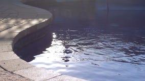 Acqua che si increspa dal lato dello stagno stock footage