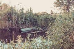 Acqua che zampilla dalla fogna al concetto ecologia/del fiume: acqua che zampilla dalla fogna al fiume modificato fotografia stock libera da diritti