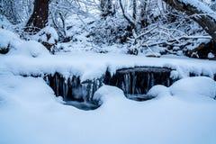 Acqua congelata corrente di Snowy Fotografia Stock Libera da Diritti