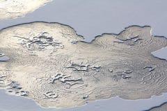 Acqua congelata estratto Fotografie Stock