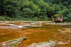 Acqua corrente di chiaro ruscello Fotografia Stock Libera da Diritti