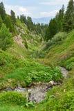 Acqua in The Creek nelle alpi francesi Immagine Stock