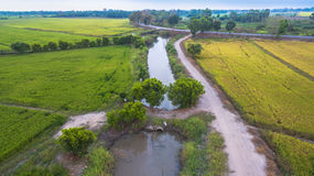 Acqua da uso della diga per riso coltivato Fotografia Stock Libera da Diritti