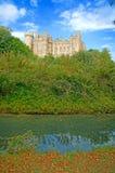 Acqua dei fogli ed il castello Immagine Stock