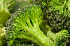 Acqua del broccolo Immagine Stock