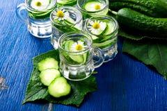 Acqua del cetriolo in sei barattoli di vetro del piccolo muratore su fondo blu rustic detox Fotografie Stock