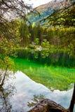 Acqua del turchese e scena degli alberi e del lago Immagine Stock