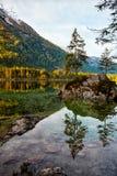 Acqua del turchese e scena degli alberi e del lago Fotografia Stock Libera da Diritti